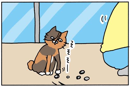 ロードバイクを趣味にした家で猫がいるとこうなる その2