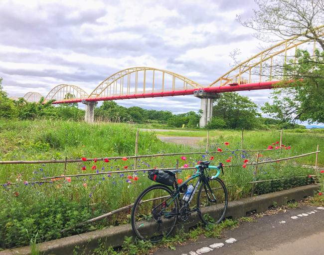 荒川〜入間川〜カフェキキまでの180kmロングライド!入間川CRの途中にあるかわいらしい橋^^人は通れません