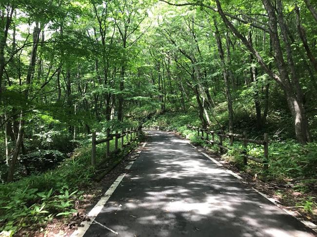初心者ローディには自信がつく!那須でほぼヒルクライムなサイクリングコースを走ってきました♪林道を走ってマイナスイオンたっぷり〜!