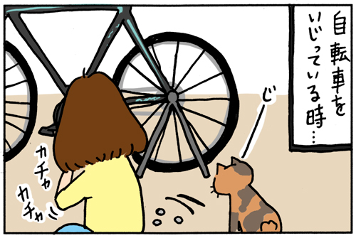 ロードバイクを趣味にした家で猫がいるとこうなる その2(漫画)