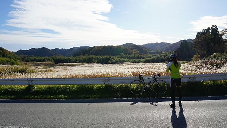 豪華メンバーで鹿野山〜千葉房総ライドしてきました☆すすきが綺麗なスポットがありました!