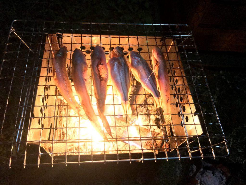 【格安&使いやすい】これで超快適キャンプに!焚き火台・タープ・ナイフの使用レビュー☆