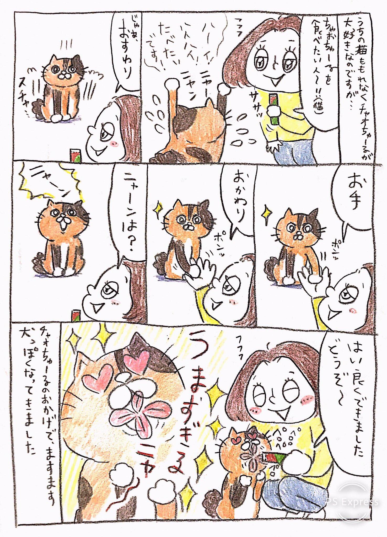 【りんこ編】Twitterに投稿しているPちゃんの日常4コマ漫画まとめ