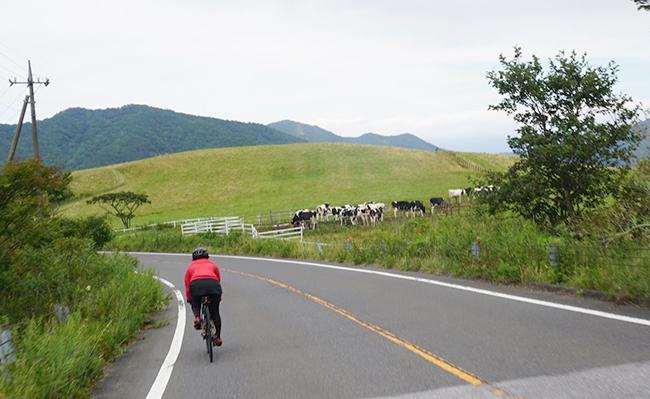 【四コマ漫画】自転車を趣味にしたら、何気ないところで発見があったの巻〜大笹牧場サイクリング〜